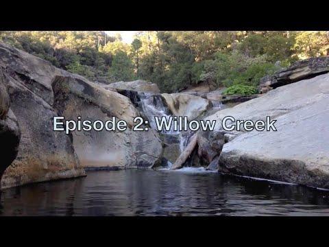 epicsode 2 - willow creek