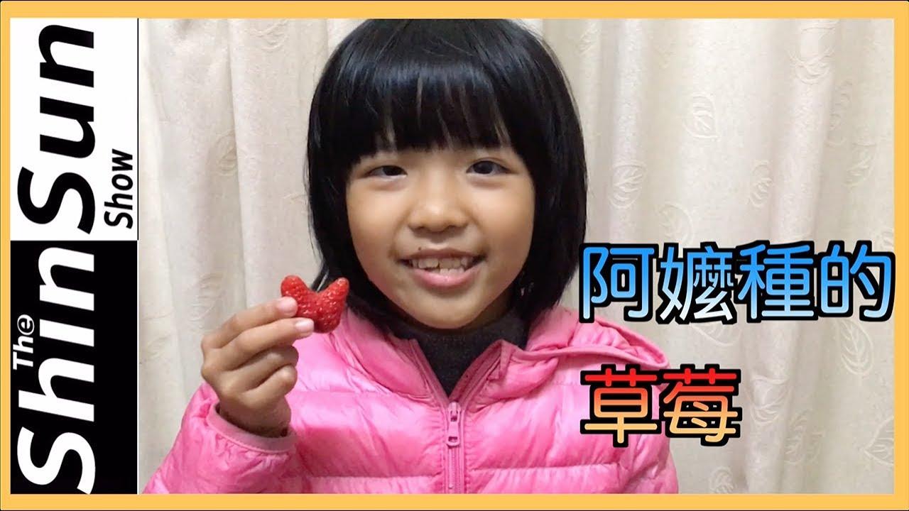 阿嬤種的草莓
