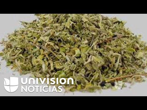 Nueva † marihuana sint�tica † causa alarma por sobredosis colectiva en Los �ngeles