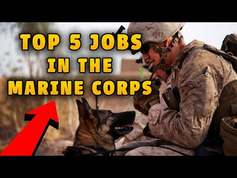 Top 5 Jobs In The Marine Corps