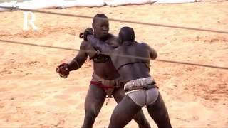 खतरे अफ्रीकी कुश्ती 1