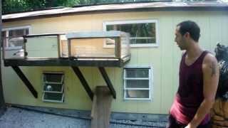 racing pigeon loft