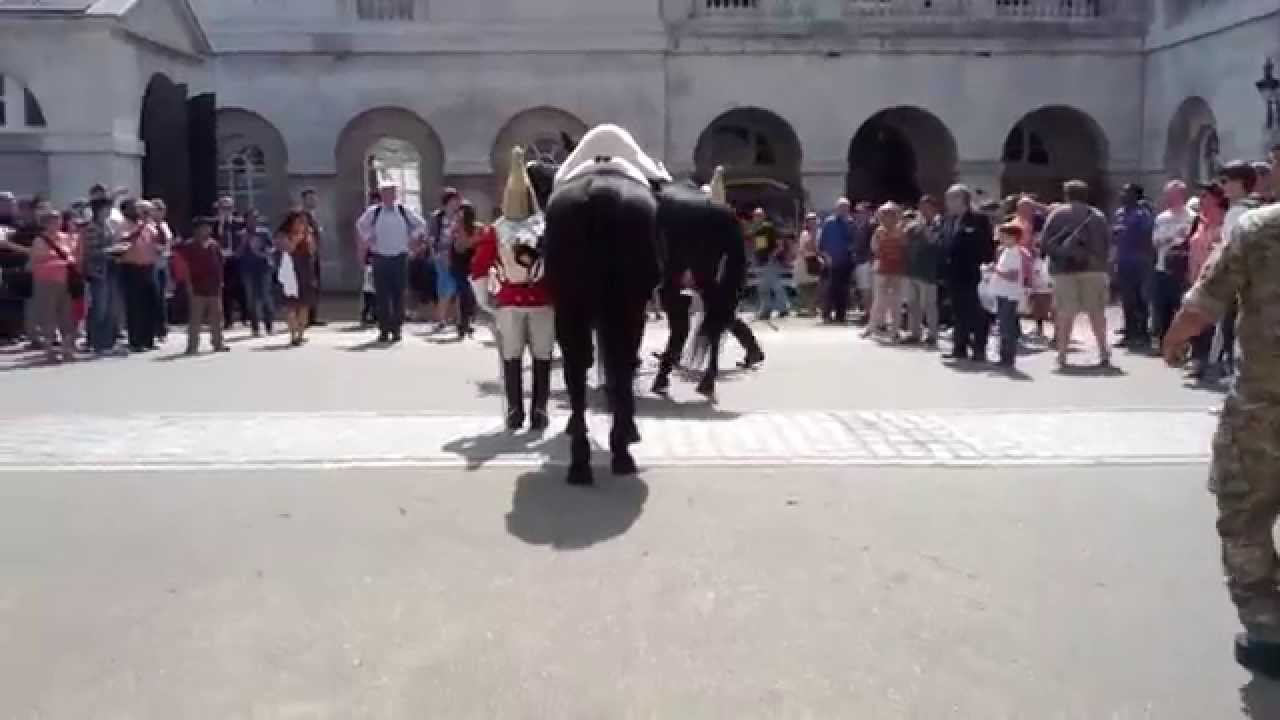 Falling horse during guard change at Whitehall London