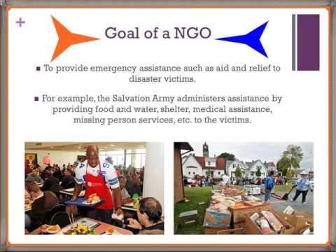 ngo meaning