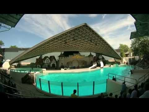 Marineland Canada - The King Waldorf® Stadium Show (1/2)