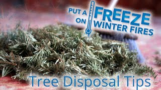 Promptly dispose of Christmas trees - Put a Freeze on Winter Fires thumbnail