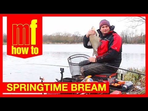 Feeder Fishing - Spring bream - Steve Ringer