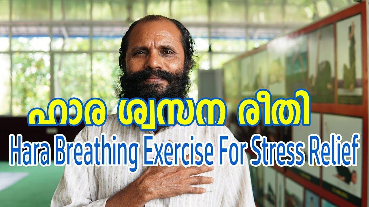 Hara Breathing Exercise For Stress Relief   ഹാര ശ്വസന രീതി   Meditation  training video Malayalam
