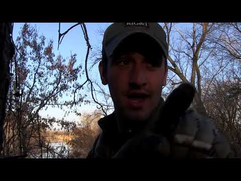 BIG KANSAS 8 POINT -The November Project Chapter 3 - Persistence