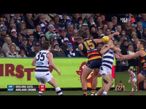 Round 11 AFL - Geelong Cats v Adelaide Crows