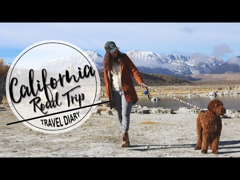 ROAD TRIP TO SAN FRANCISCO + OUR US ROAD TRIP HIGHLIGHTS! | TRAVEL DIARY