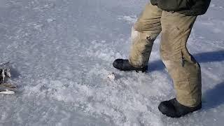 Владивосток Морская подледная рыбалка