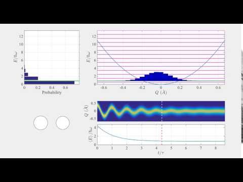Thermalized Quantum Harmonic Oscillator
