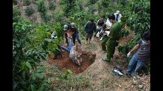 Sát hại chủ nợ, chôn xác phi tang rúng động Lâm Đồng