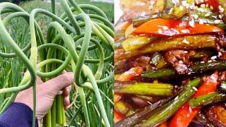 Maneuljjong-bokkeum 마늘쫑볶음 |  Stir-fried garlic scapes | The Restaurants Food