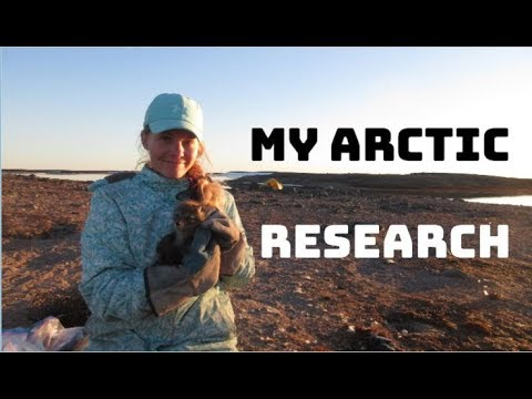 My Arctic Research - Summarized In Under 2 Minutes