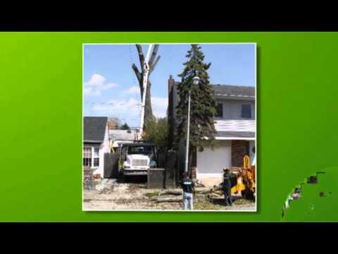 T & M Greencare Inc. - Nassau, NY
