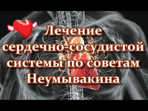 Лечение сердечно сосудистой системы по советам Неумывакина