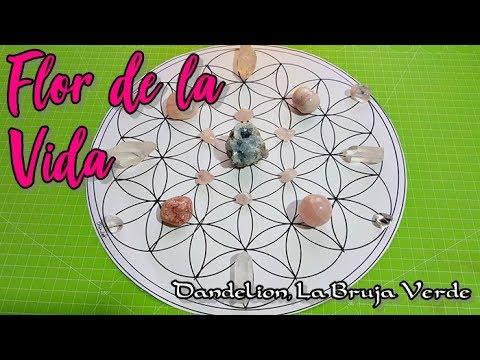 Como Dibujar Una Flor De La Vida Para Tramas De Cristales