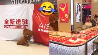 Try Not To Laugh Challenge P1 | Funny Fails - Funny Pranks 2019