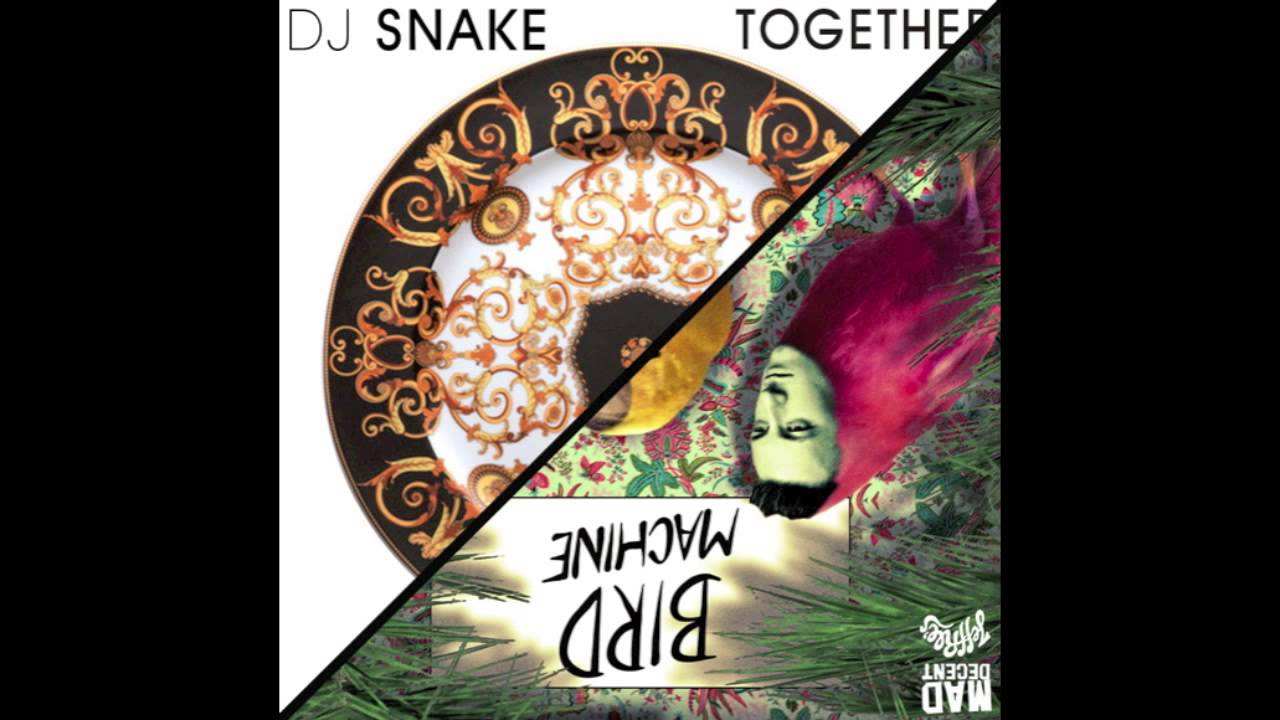 Dj snake x alesia vs ying yang twins wait till you see my bird.