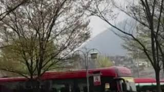 경기북부지역 자대배치 이동 병사들 영상 입니다.