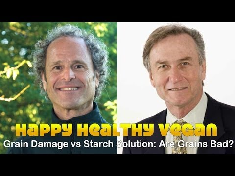 Grain Damage vs Starch Solution: Are Grains Bad?
