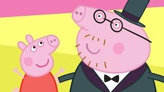 Peppa Pig Français Champion Daddy Pig! 🏆| Dessin Animé Pour Enfant