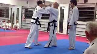 Master Vasilis Alexandris - Taekwon-Do ITF Self-defence class (2)