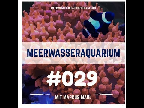 Leichter Einstieg in das Meerwasseraquarium   - Aquarium West GmbH München