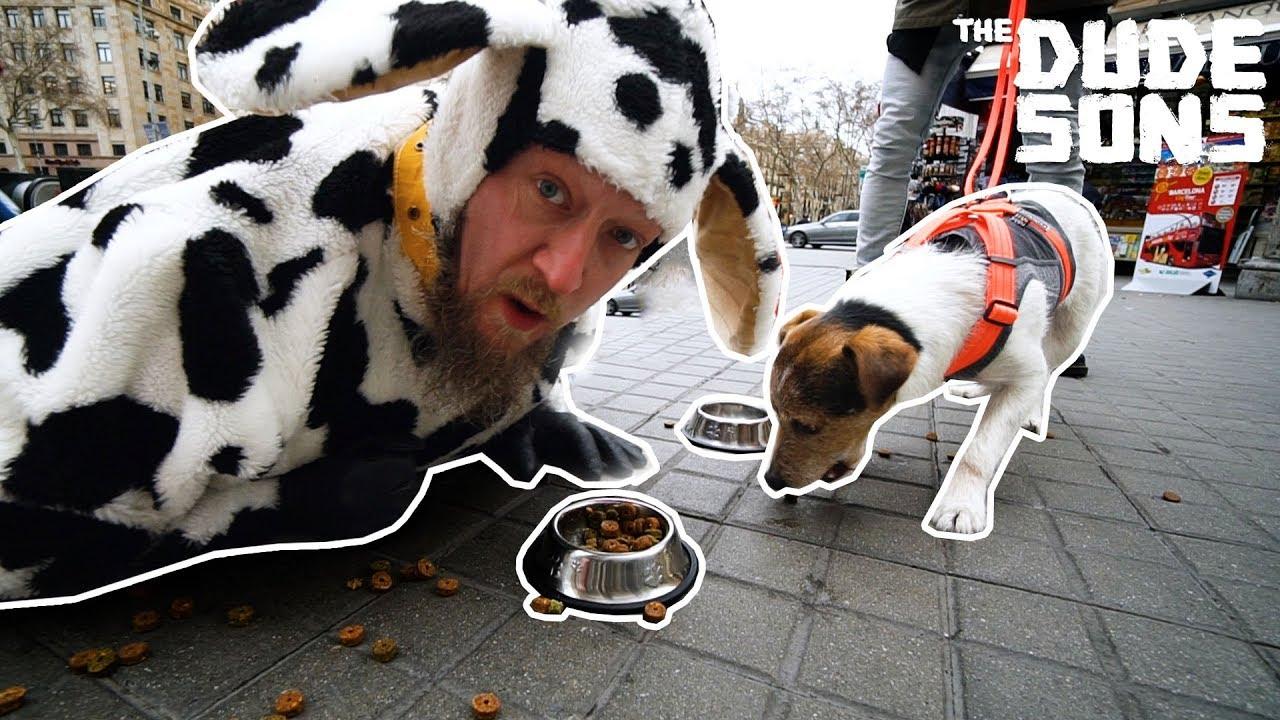 MAN VS DOG AGILITY TRACK CHALLENGE!