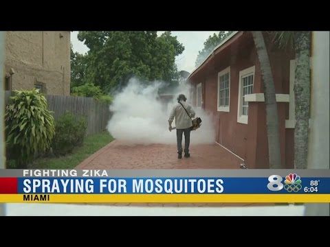 CDC We are Nearly From Money to battle Zika