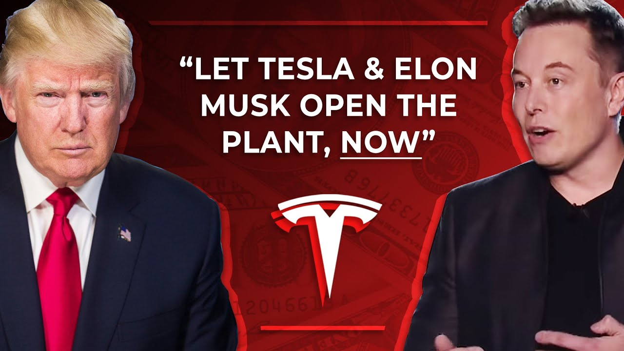 Trump Supports Elon Musk Reopening Tesla's Factory as Tesla Continues Production
