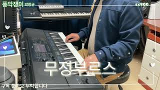전자올겐연주 무정부르스 Yamaha psr sx900