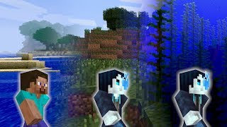 Evolution d'un Seed Minecraft de la Beta à la 1.13