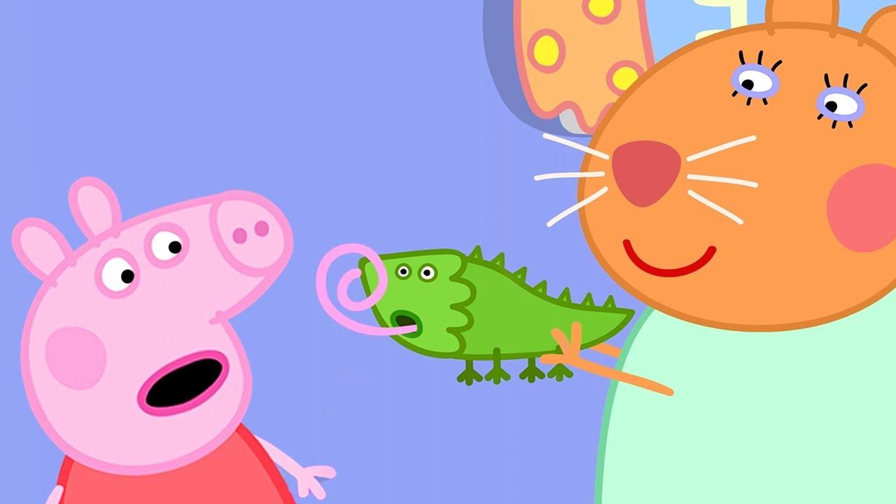 Peppa Pig Português Brasil 🐢Pequenos Animais | HD | Desenhos Animados
