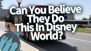 Can You Believe They Do This in Disney World?!