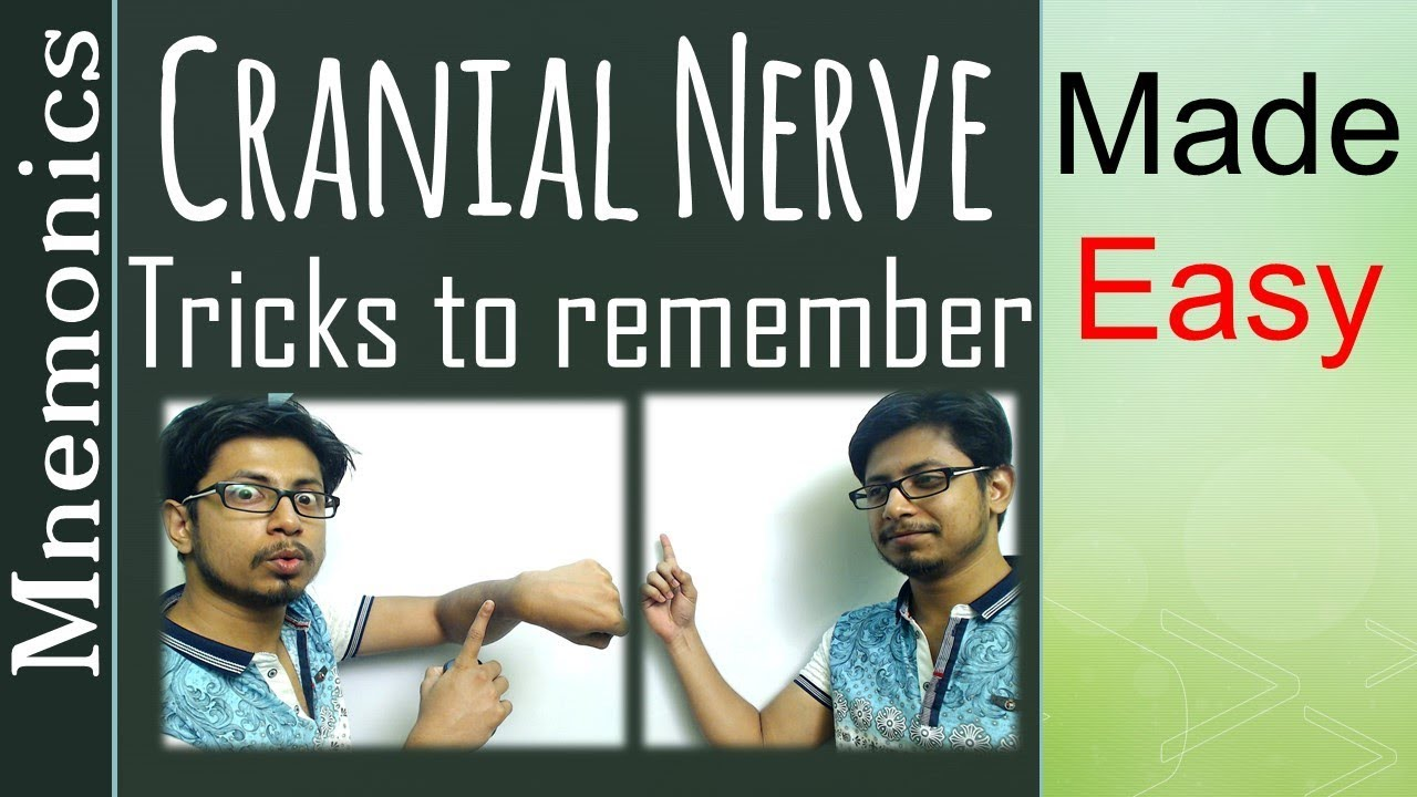 Cranial nerve tricks to remember | List of cranial nerves ...