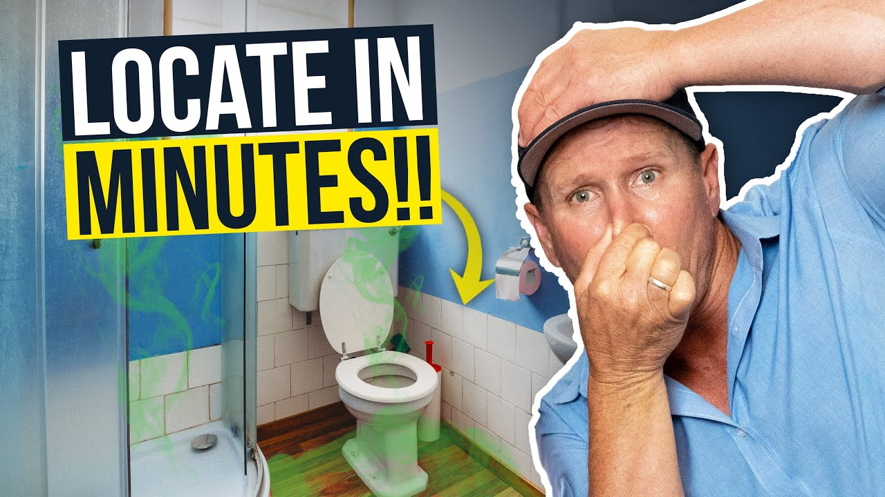 How To Find Sewer Smell In Your House, Sewer Smell In Bathroom