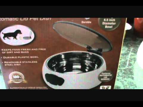Rfid Pet Bowl Funnycat Tv