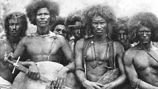 Video Untold History Of The Aborigines Of America - African Americans Are Indigenous To America Not Africa download MP3, 3GP, MP4, WEBM, AVI, FLV Juli 2018