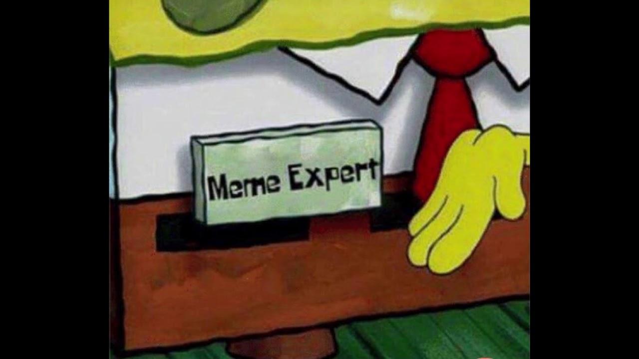 Image result for meme expert