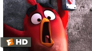 Angry Birds - Save That Egg! Scene (9/10) | Movieclips