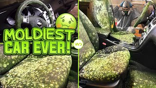 Deep Cleaning the MOLDIEST BIOHAZARD CAR EVER! | Satisfying DISASTER Car Detailing Transformation