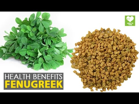 Fenugreek - Healthy Benefits | Health Tips Education - YouTube