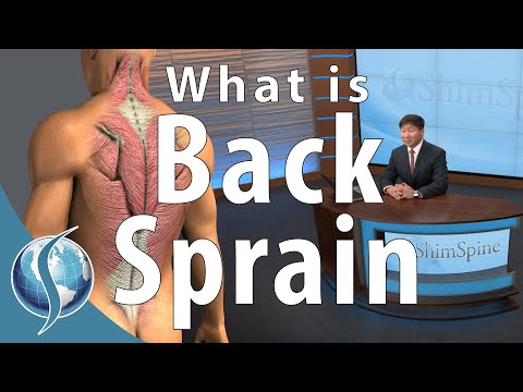What is a Back Sprain?