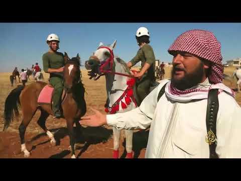 هذا الصباح - مهرجان للخيول العربية الأصيلة بسوريا  - نشر قبل 1 ساعة