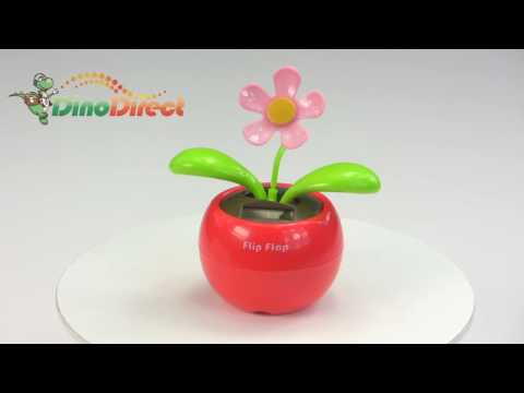 Solar Powered Gift Magic Flip Flap Flower Red  from Dinodirect.com