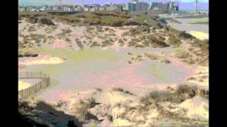 Strand en duinen Bredene-Oostende