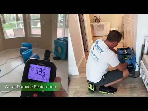 same-day-mold-inspection-by-mold-response-team